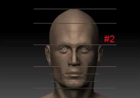 mesurehead2