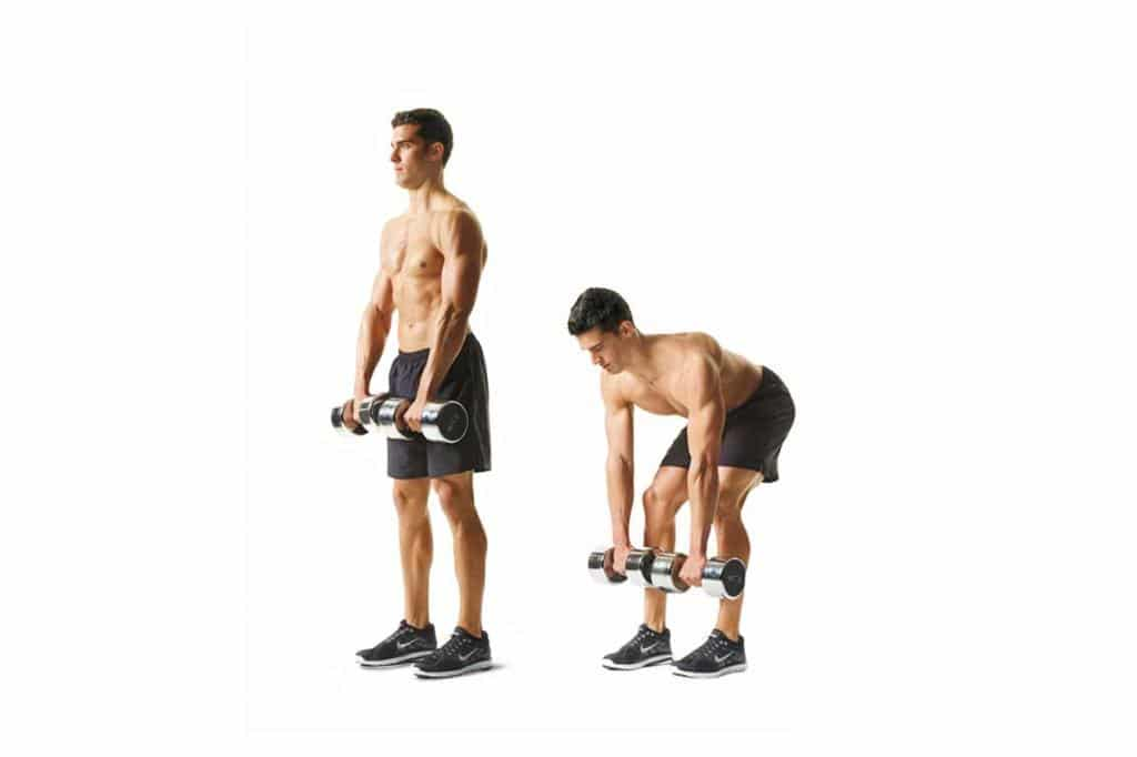 muscle building, new body, jump squat, dumbell row, push-up, build muscle, how to build muscle