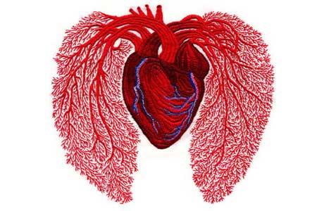 heartandlungs