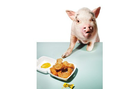 weight loss, belly off, diet strategies, lose your gut, 6 Ways To Prevent A Pig Out, pig out, temptation, willpower