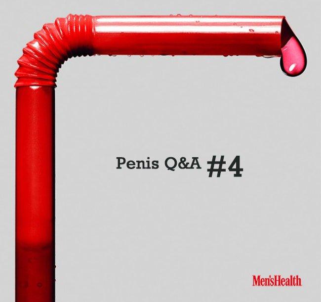 penis04