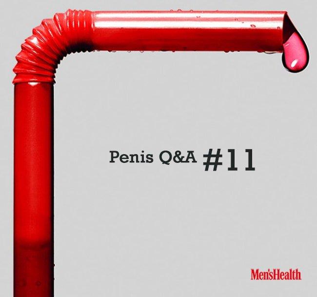 penis11