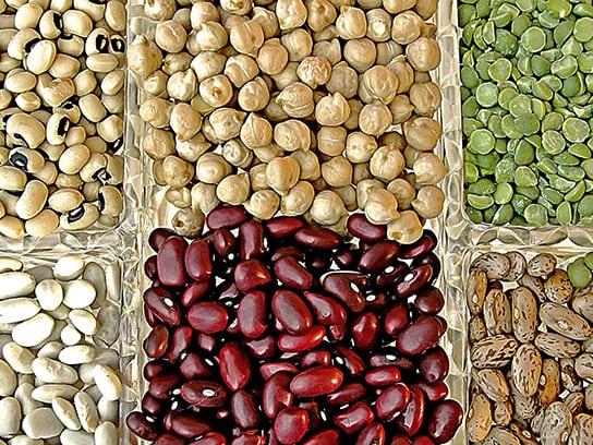 best-bean1