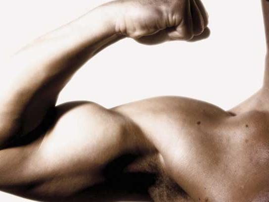 BicepsPic1 (1)