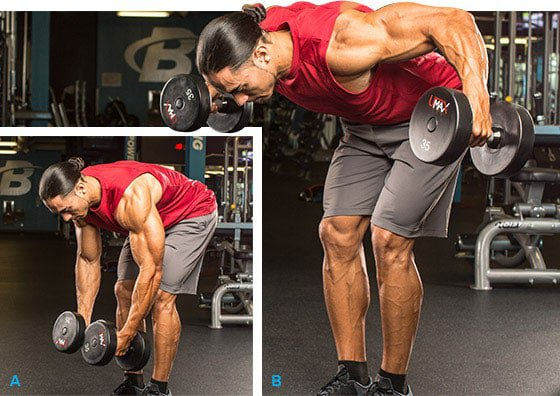 7-rear-delt-raise-variations-for-maximum-growth-graphic-1-1
