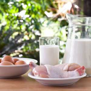 assortment of protein packed foods like egg chicken and milk