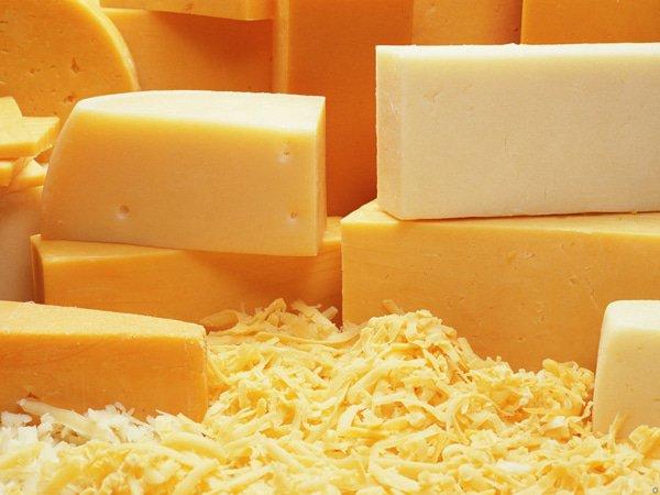 Cheese-Photos