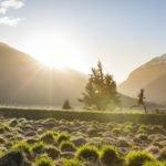 Braden Currie 2015 New Zealand