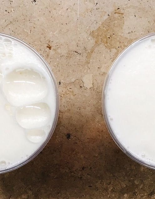 whats-better-whole-milk-or-skim-31