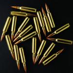 Large game bullets on black