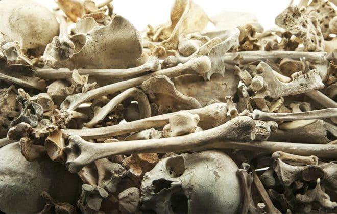 clean-eating-diet-could-damage-bones