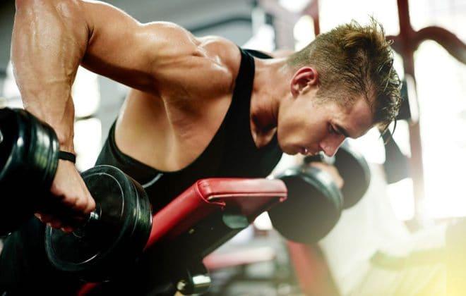 muscle-main