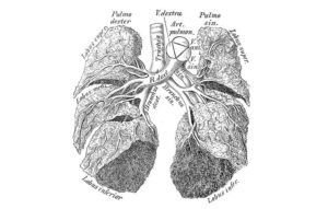 hard-to-detect-cancers-lung-cancer