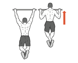 pull up arms workout