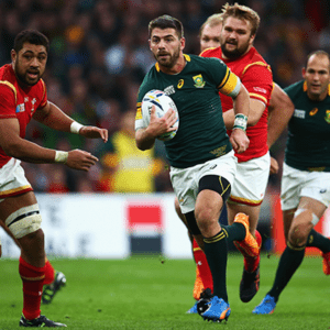 Watch The Boks Play In The Rugby World Cup 2019™ In Japan