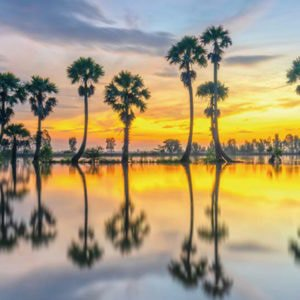 a landscape of cambodia where you should go on your next adventure
