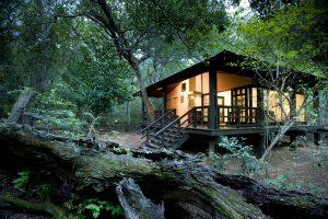 andbeyond phinda lodge eco-friendly destinations