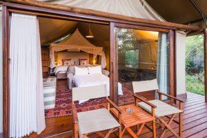 madikwe game reserve sustainable